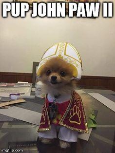 Pup John Paw II  #Catholic #Pope