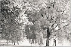 Philadelphia wedding photography from Hoffer Photography (15)