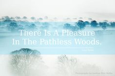 Lord Byron Quote Nature - Stunning Nature Landscape Art Photography by Andrew Bret Wallis http://bit.ly/1Tb84Lo #lordbyron #inspirationalquotes #woods #nature #landscape #limitededition #inspiration #photography #art #quote