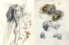 brian froud sketchbook - Google Search