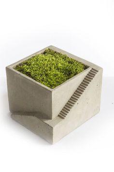Mothology.com - Cement Architectural Plant Cube Planter I, $14.95 (http://www.mothology.com/cement-architectural-plant-cube-planter-i/)