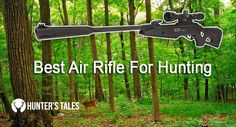 Guides to choose the best Air Rifle for hunting #hunting #gun #rifle