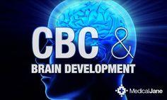 Study: Cannabichromene (CBC) Found In Cannabis May Aid Medical Marijuana Patients In Furthering Brain Development