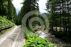 Photo about Mountain river in Tatra mountains Poland. Image of clearing, hiflanders, huts - 59258343 Tatra Mountains, Poland, Sidewalk, River, Stock Photos, Nature, Image, Naturaleza, Side Walkway