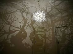 Chandelier Projects Spooky Shadow Forest onto Walls