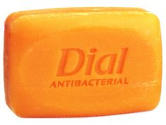 Dial Soap Antibacterial. Wash with this if you encounter poison ivy, etc. Works like a charm!