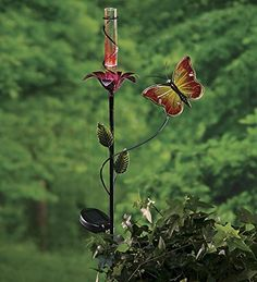Butterfly And Flower Solar Rain Gauge Wind & Weather® http://www.amazon.com/dp/B00CEEDSO0/ref=cm_sw_r_pi_dp_i-Wjvb0W2B3BB