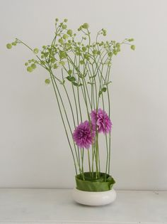 ikebana. Looks like dahlia, maybe banana leaf below and a mystery plant above.