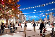 Free in Denver this winter. From holiday parades to ice skating, here are 11 free things to do in Denver in the winter. Colorado Springs, Le Colorado, Colorado Winter, Visit Colorado, Downtown Denver Colorado, Colorado Mountains, Denver Vacation, Denver Travel, Travel Usa