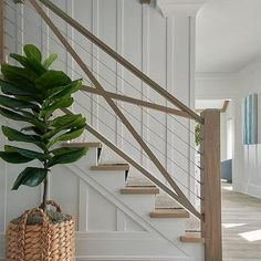 Morgan Harrison Home - A fiddle leaf fig plant in a woven planter sits in front of a staircase boasting stained wood treads covered in a natural woven herringbone runner and a wire and wood railing. Cable Stair Railing, Wood Railing, Staircase Railings, Staircase Design, Stairways, Modern Railing, Banisters, Spiral Staircases, Farmhouse Stairs