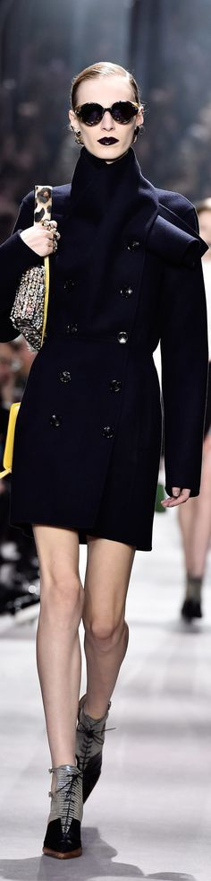 Christian Dior fall 2016 RTW. Now I could do with This. What a tremendous collar!