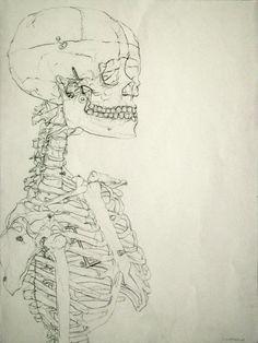 Blind Contour Drawings by Sofiya Mushyakhova, via Behance