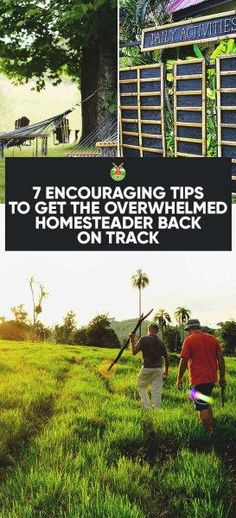 7 Encouraging Tips To Get The Overwhelmed Homesteader Back On Track