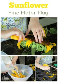Sunflower Fine Motor