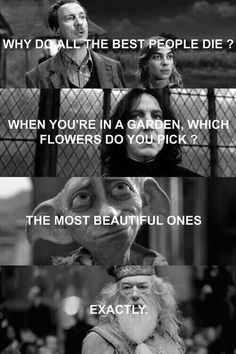 """Why do all the best people die?"" ""When you're in a garden, which flowers do you pick?"" ""The most beautiful ones."" ""Exactly."" (Lupin, Tonks, Snape, Dobby, Dumbledore)"