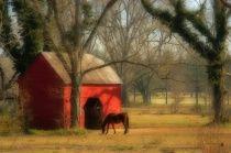 Meet Me At The Barn