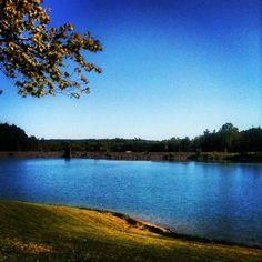 Lake Hammertown Jackson, Ohio  Taken by Teri Haynes