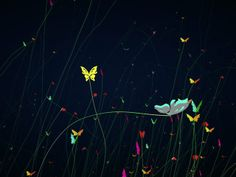 21.TP_13_Butterflies by jimmy. Cinema4D tutorial & Thinking particle in chinese.