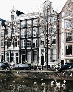 . Dutch Words, Holland Netherlands, I Amsterdam, Low Country, Wild And Free, Belgium, Mansions, Lofts, City Life