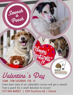 Help us promote our Smooch a Pooch event at City Dog Market by downloading and printing a flyer!