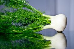 Fennel: middling. I think I like the flavor of celery more, but fennel usually works better as a principle ingredient.