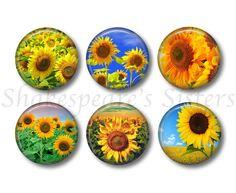 Sunflower Magnets  Fridge Magnets  Flower by ShakespearesSisters