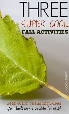 3 Hands-on Science Experiments Teaching Kids Why Leaves Change Color. Perfect for fall!