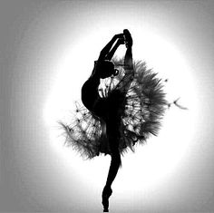 Beautiful - dandelion ballerina