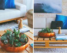 Como cuidar de cactos Cactus Plants, Sweet Home, Table Decorations, Pasta, Urban, Blog, Succulents Garden, Cactus Types, Growing Plants