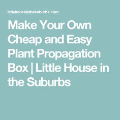 Make Your Own Cheap and Easy Plant Propagation Box   Little House in the Suburbs