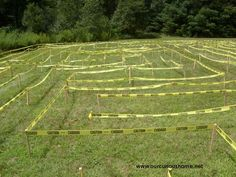 "Great idea for making a maze for the kids! Wooden stakes and ""caution"" tape."