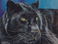 Black Panther Art Print by Lorna Stephens. All prints are professionally printed, packaged, and shipped within 3 - 4 business days. Living Treasures, Black Panther Art, Wildlife Paintings, Painting & Drawing, Fine Art America, Creatures, Thing 1, Marvel, Art Prints