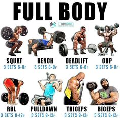 Have you ever trained full body?Full body workouts(FB) are a great split to fo… Have you ever trained full Full Body Workout Routine, Gym Workout Tips, Weight Training Workouts, Yoga Routine, Post Workout, Full Body Workout Program, Full Body Strength Workout, Total Gym Workouts, Full Body Gym Workout