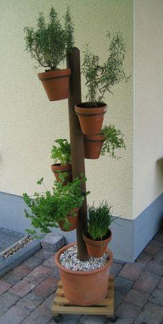 Kräuterbaum - kann man sicher auch selbst machen Spart Platz und sieht toll aus