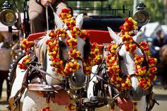 Detalle de los adornos de las mulas