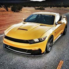saleen's 302 Mustang