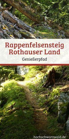 Im Urwald von Morgen: Bei einer Wanderung die Natur im Schwarzwald genießen auf den Rappenfelsensteig.