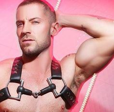 Gay Adult Star Tyler Wolf harnessed
