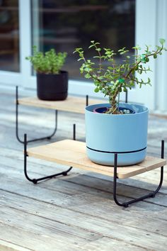 The Staple Collection by Lucious Handmade x Hamilton Taylor Made - Design Milk Wooden Plant Stands, Diy Plant Stand, Furniture Making, Garden Furniture, Furniture Ideas, Diy Planters Outdoor, Planter Ideas, Garden Angels, Taylormade