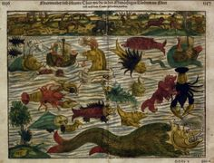 """A collection of the weird and mysterious creatures found on Olaus Magnus's 16th-century """"Carta marina,"""" or """"map of the sea."""""""