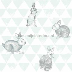 Roll Size: 53 cm width x length meter. Pattern can be connected. Quality: Non-Woven wallpaper. All White Room, Smile Wallpaper, Mint, Animal Wallpaper, New Room, Smiley, Bunny, Nursery, Kids Rugs