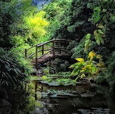 Zilker Botanic Gardens . Austin, Texas