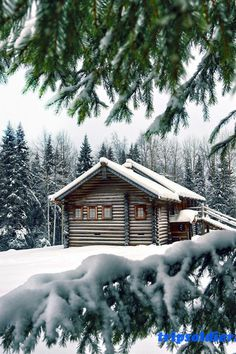 What a beautiful rustic log cabin! I'd stay here in the winter. Winter Wallpaper, Tree Wallpaper, Forest Wallpaper, Animal Wallpaper, Computer Wallpaper, Wallpaper Desktop, Black Wallpaper, Flower Wallpaper, Winter Cabin