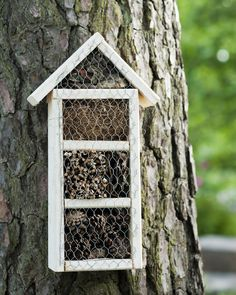 Landscaping Around Trees, Bug Hotel, Mason Bees, Sensory Garden, Greenhouse Gardening, Creature Comforts, Garden Structures, Amazing Gardens, Bird Houses