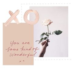 xo print, photography, rose, flower, quote, you are some kind of wonderful, art
