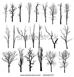 vector black silhouette of a bare tree - stock vector