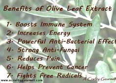 Olive Leaf Extract is Amazing!