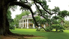 The Inn at Houmas House Plantation and Gardens | Treat yourself. Looking for a weekend trip with friends or a romantic getaway with someone special? These Southern inns offer the best experiences. If you're looking for a little adventure, head to Wildcatter Ranch in Graham, Texas. Want something with the sound of waves crashing? Elizabeth Point Lodge on Amelia Island, Florida is the perfect getaway. Have dog, must travel? The folks at Foley House Inn in Savannah, Georgia will make sure Fido…