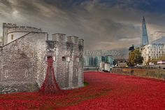 Tower of London Poppies Blood Swept Lands and Seas of Red photograph art print #poppies #toweroflondon #art #photography