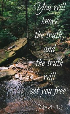 """John :832 NIV.....Then you will know the truth, and the truth will set you free."""""""